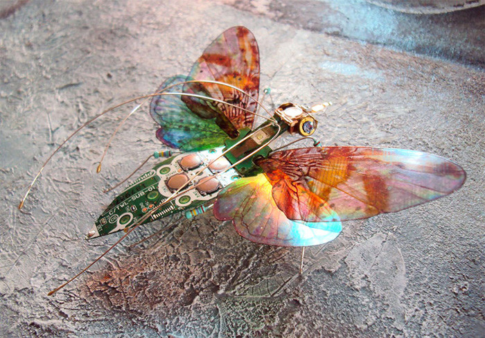 Nintendo Insects de Julie Alice Chappell